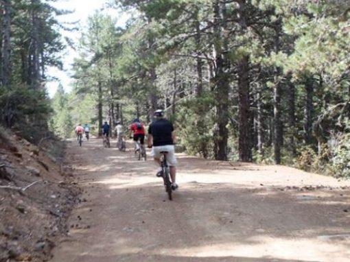 Mountain Biking 2.JPG
