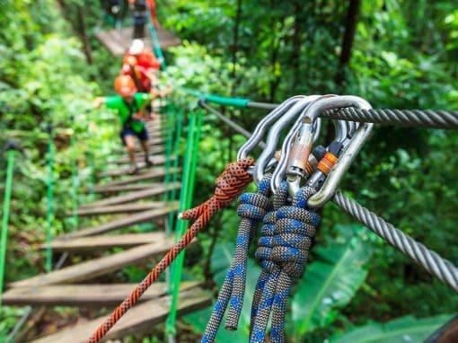 High Ropes Adventure.jpg
